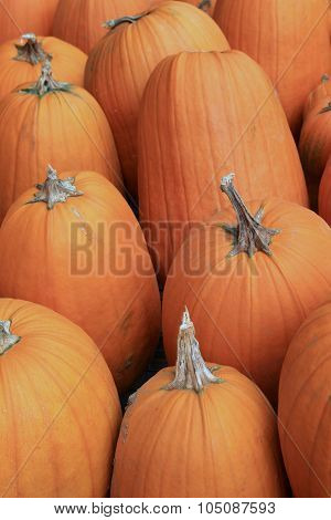 Several large pumpkins on table