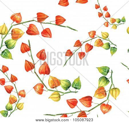 Watercolor physalis seamless background pattern