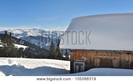 Shelter In Winter