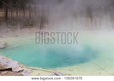 Emerald Spring At Norris Geyser Basin
