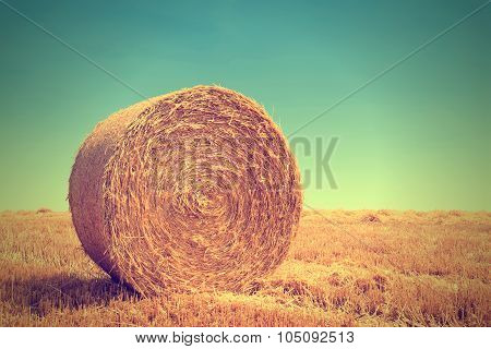 bale pressed from straw after harvest