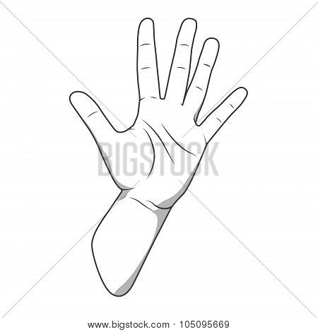 Palm hand number five gesture vector illustration
