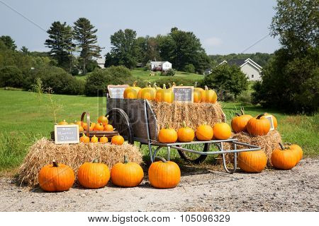 A display of pumpkins for sale at the roadside.