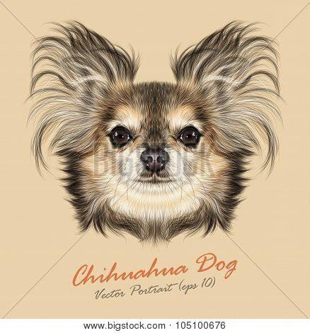Vector Illustrative Portrait of Chihuahua dog.