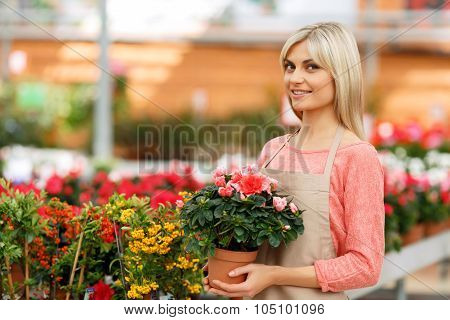 Nice florist working with flowers