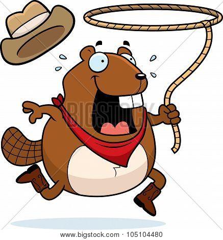 Beaver Rodeo
