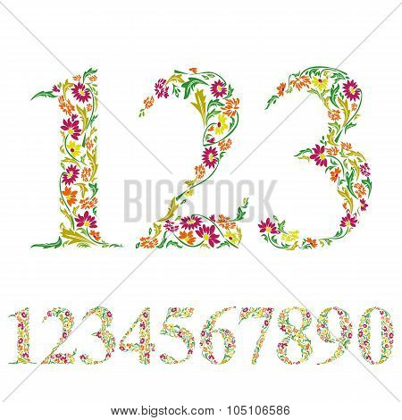 Floral Numbers Set, Vintage Style Numerals, Vector Set.