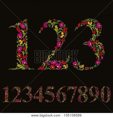 Beautiful floral numbers set vector flower-patterned numerals.