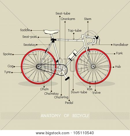 Vector bicycle illustration with text Ride Me on tan background. Anatomy of Bicycle.