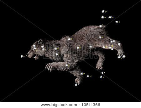 The Great Bear (Ursa Major)