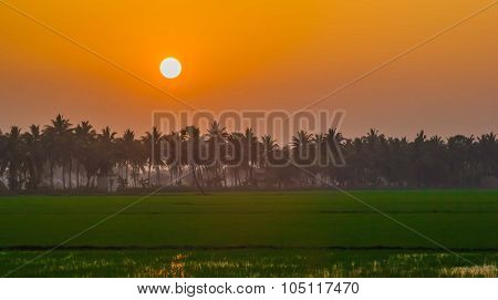 An orange sunset
