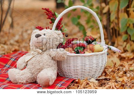 A Teddy Bear Teddy Sits On A Carpet Near A Basket