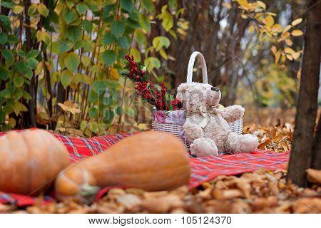 A Teddy Bear Teddy Sits On A Carpet Near A Basket