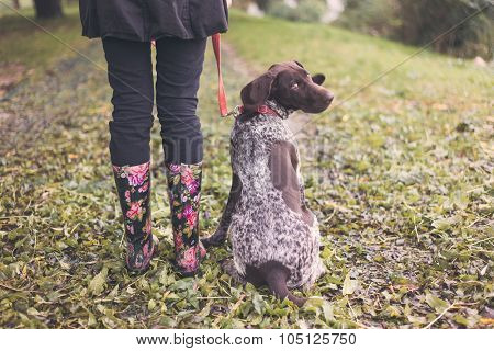 Cute german pointer and woman legs in rainboots, ready for walk in autumn park