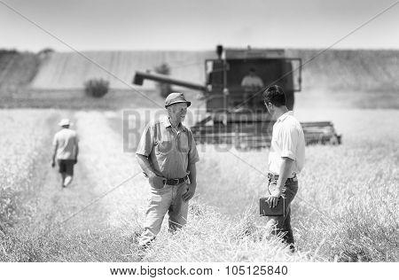 .business People On Wheat Field