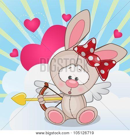 Cupid Rabbit
