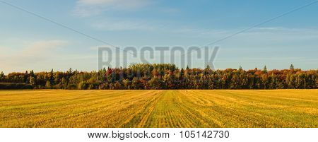 Panorama Of Pei Rural Scene At Fall