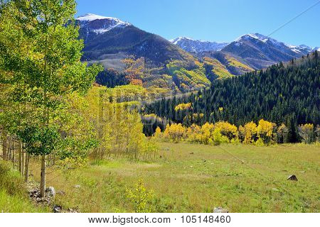 Mountains With Colorful Aspen During Foliage Season