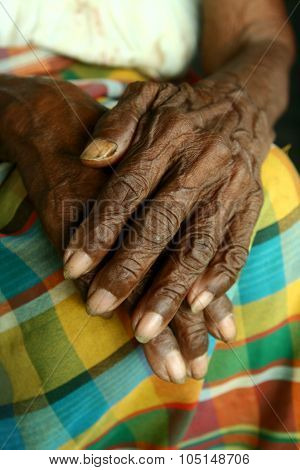 Wrinkled pair of hands of an old woman