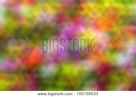 Background Of Colorful Blurred Bright Colors