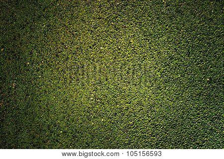 green rubber texture