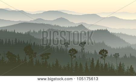 Horizontal Illustration Of Misty Forest Hills.