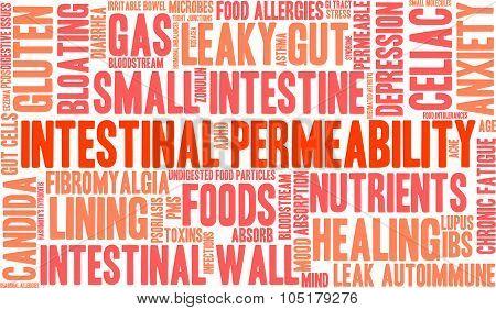 Intestinal Permeability Word Cloud