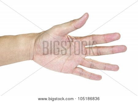 Open The Palm Of The Hand Isolated In White Background