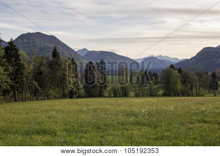 Field And Mountains