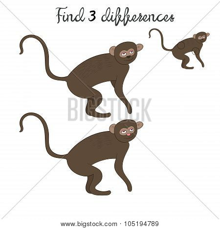 Find differences kids layout for game vervet ape