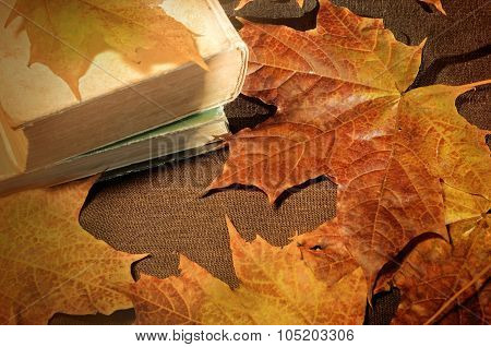 Vintage Autumn Still Life - Old Books On The Table Near Yellow Maple Leaves