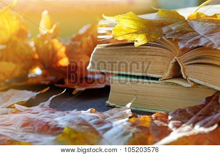 Vintage Autumn Still Life - Old Books On The Table Near Dry Maple Leaves