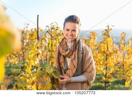 Smiling Young Woman Winegrower Standing In Autumn Grape Field