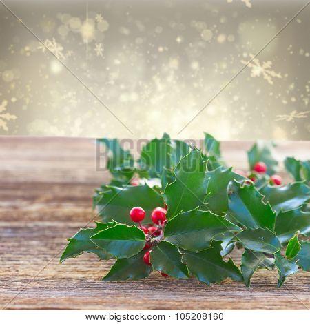 Holly fresh branch