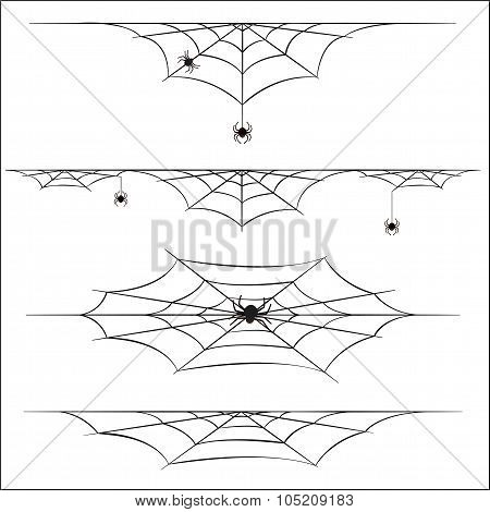 Spiders And Cobweb On White Background
