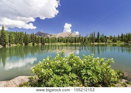 Dark Canyon Lake In Utah
