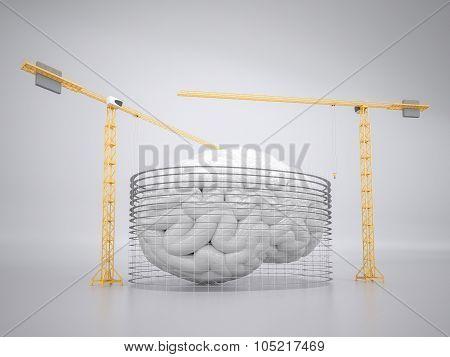 Building brain concept