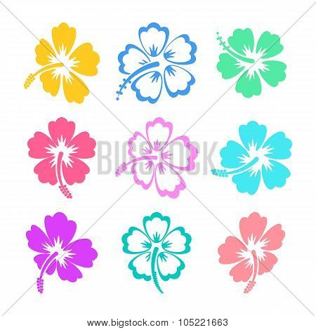 Colorful Vector Hibiscus Icons