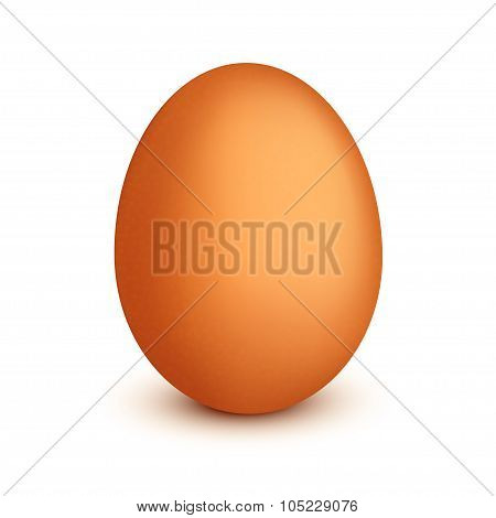 picture of egg single