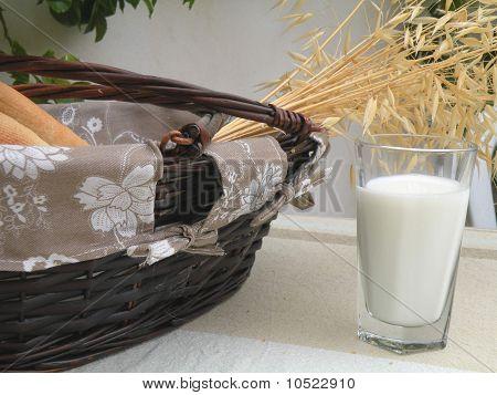 Basket Of White Rolls