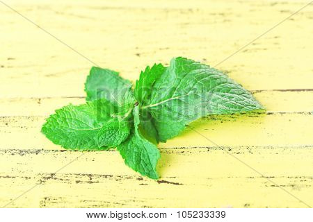 Bunch of mint on yellow wooden background