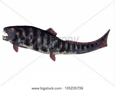 Dunkleosteus Devonian Fish