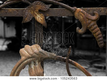 Iron Gate with Spider Web