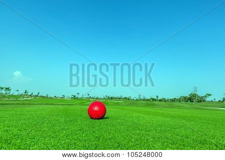 Contrasting Of Red Demo Golf Ball And Green Golf Course Background.