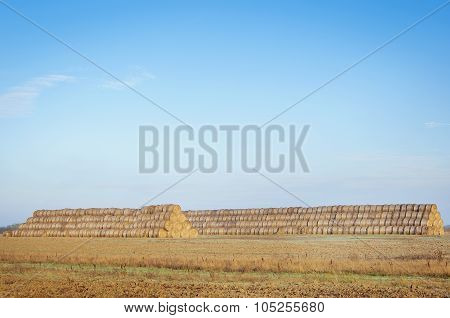Rural Landscape Showing Wheat Haystack