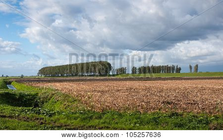 Threatening Clouds Above An Agricultural Landscape