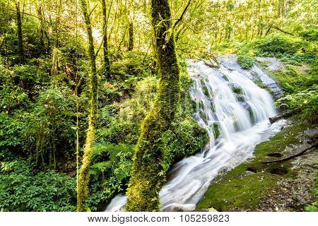 Waterfall In Forest Of Doi Inthanon National Park, Chiang Mai, Thailand