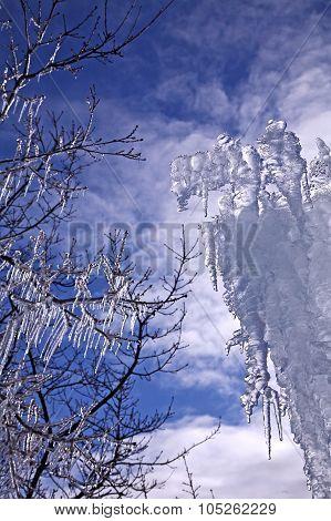 Artsy Ice