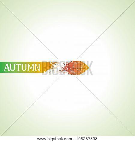 Creative autumn design