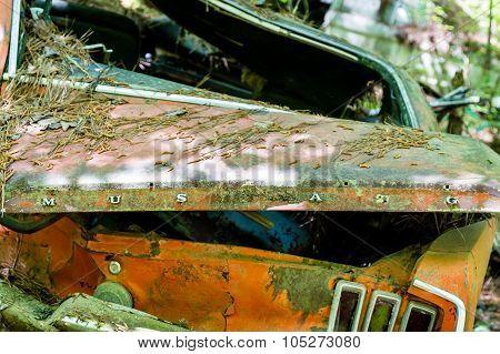 Orange Mustang Wrecked